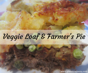 Veggie Loaf & Farmer's Pie